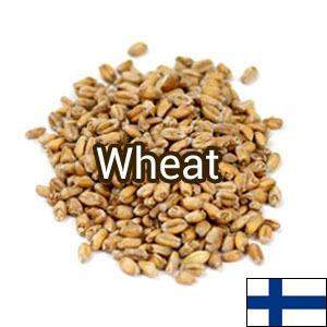 Солод Wheat (пшеничный) Viking Malt 1кг